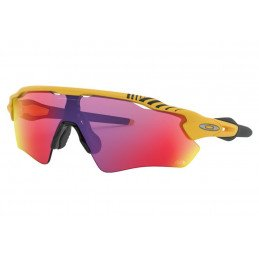 Lunettes Oakley Radar EV Team Yellow TOUR DE FRANCE 2019 OO9208-76